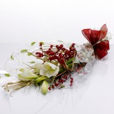 Gift Wrapped Amaryllis with Berries