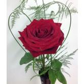 Single Red Rose in Black Vase